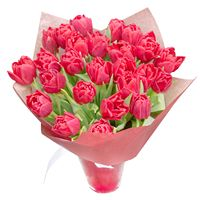 Bouquet of tulips Fiery Dawn