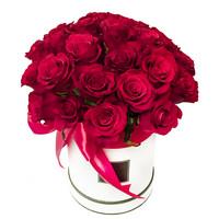 Arrangement Beauty of Love